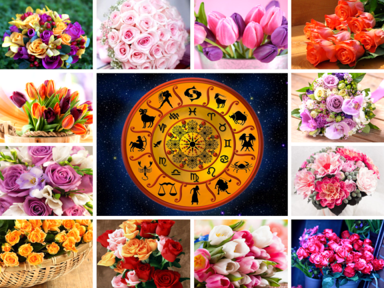 Комнатные цветы по знакам зодиака для женщин