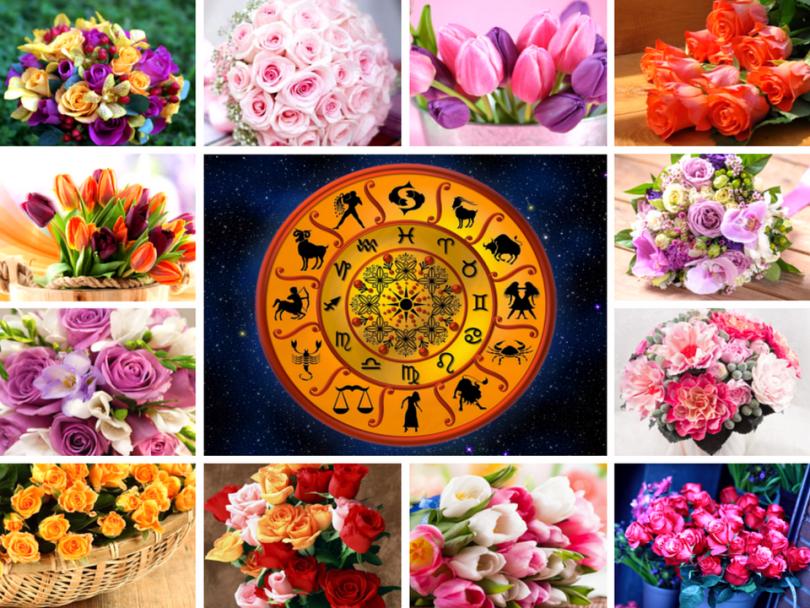 Цветы для женщины рака