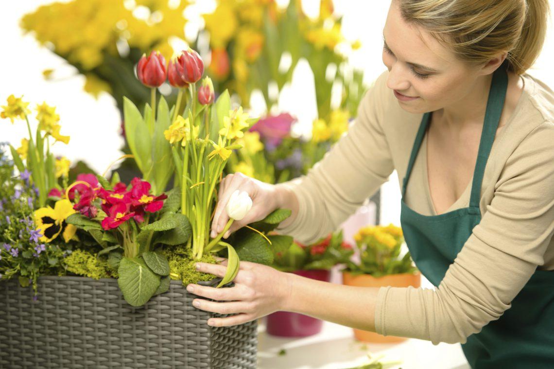 Работа с цветами нашоп