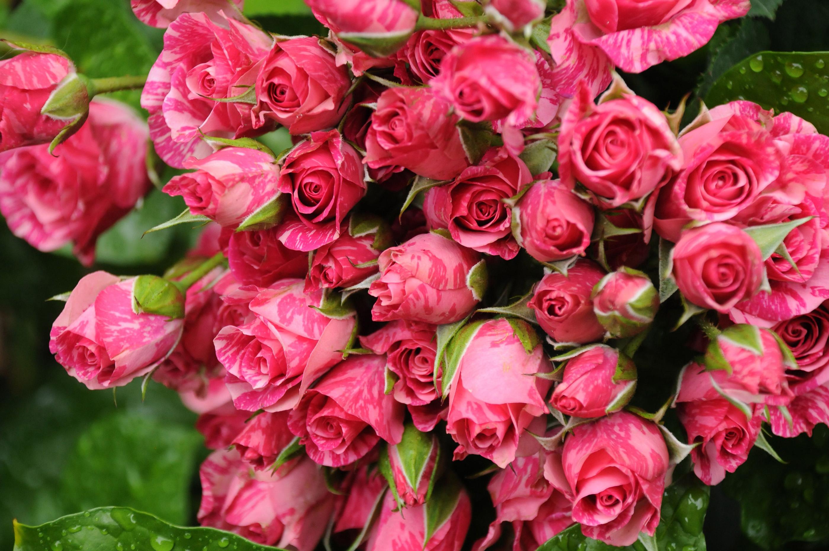 искусственные цветы на 8 марта