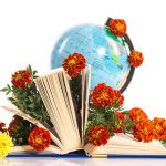 Никто не догадается подарить дачные цветы - это будет оригинально