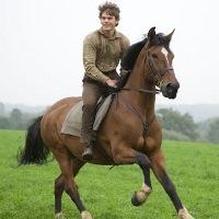 конная прогулка