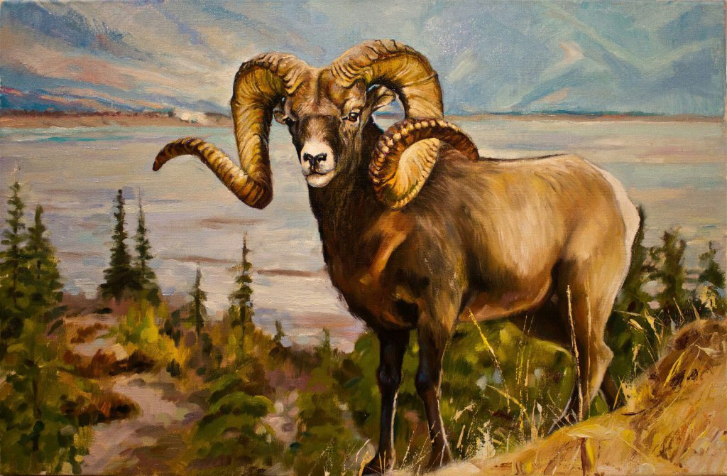 Горный козел картина