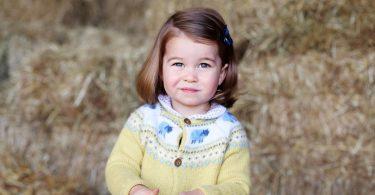 племянница 3 года