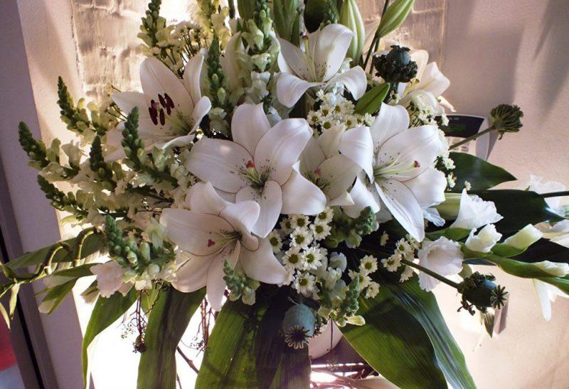 Лилии источают сильный запах
